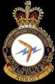 1CCS Squadron Badge (RAAF).png