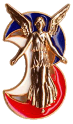 3rd Light Armoured Brigade (France) - Insignia of the 3rd Mechanised Brigade 3e BM.
