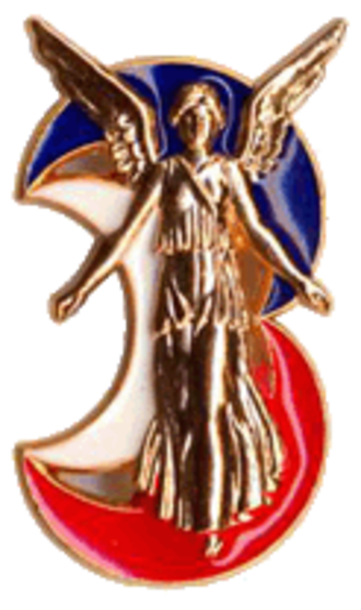 3rd Armored Division (France) - Insignia of the 3e DIV.