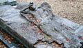 2007-0103-073818.jpg