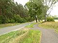 2008-08-09-werbellinsee-081.jpg