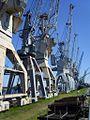 2010 06 16 Kräne Hafenmuseum k.JPG