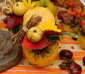 2015-10-17 11-16-01 marche-plantes-belfort.jpg