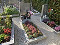 2017-10-18 (330) Friedhof Plankenstein.jpg
