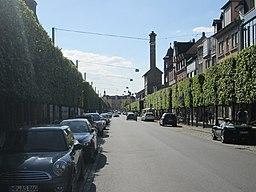 Carl-Theodor-Straße in Schwetzingen