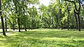 20200905 145924 Park Piłsudskiego in Łódź.jpg