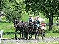 21te Rammenauer Schlossrundfahrt der Pferdegespanne (047).jpg