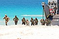 22nd Marine Expeditionary Unit storms the beach during Bright Star 2009 DVIDS212877.jpg