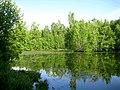 3074. Lake Sobach'e in the park Sosnovka.jpg