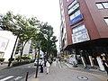 3 Chome Shinyokohama, Kōhoku-ku, Yokohama-shi, Kanagawa-ken 222-0033, Japan - panoramio (1).jpg