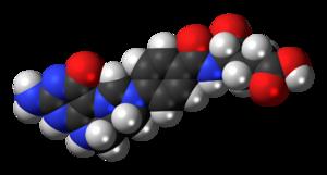 5,10-Methenyltetrahydrofolate - Image: 5,10 Methenyltetrahydrofo late cation 3D spacefill