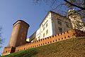 7387vik Wawel. Foto Barbara Maliszewska.jpg