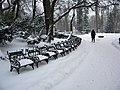 8. Bucuresti, Romania. Parcul Cismigiu in ultima zi de iarna 2018 (o alta imagine a parcului).jpg