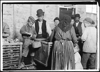History of the Poles in the United States - 9 year old worker shucking oysters. Behind him is the foreman, who recruited the workers from Baltimore, Maryland.
