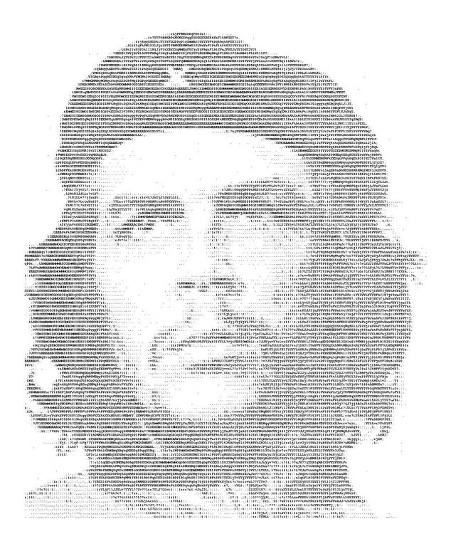 One Line Ascii Art Bat : File ascii art che pdf wikimedia commons