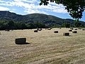 A Fair Field Full of Bales - geograph.org.uk - 184699.jpg