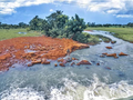 A Flowing Stream In Northern Ghana.png