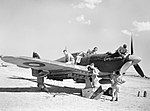 A Hawker Hurricane Mk IV of No. 6 Squadron RAF being serviced at Foggia in Italy prior to a sortie over the Adriatic, 24 July 1944. CNA3035.jpg