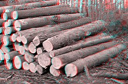 A Woodpile 3D