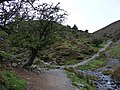 A choice of routes, Carding Mill Valley - geograph.org.uk - 2093174.jpg