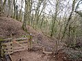 A gate on the footpath through Watercombe woods - geograph.org.uk - 1719103.jpg