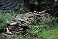 A log pile Clavering Essex England 2.jpg