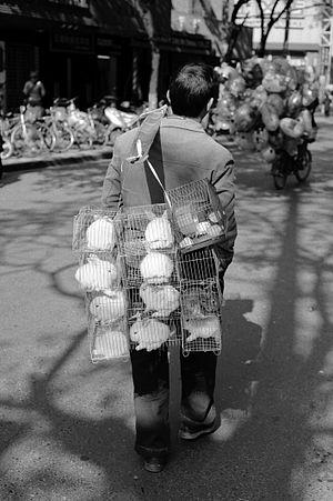 A man sells some rabbits