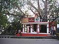 A small Siva Temple Jammu.JPG