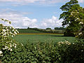 A view east from north of village, Belton (nr Grantham) 01.jpg