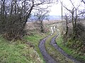 A winding lane. - geograph.org.uk - 115393.jpg