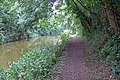 A wooded stretch of the Ashby Canal - geograph.org.uk - 926538.jpg