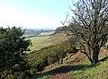 Abbot's Castle Hill, Shropshire - geograph.org.uk - 693422.jpg