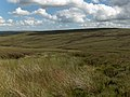 Above Black Burn - geograph.org.uk - 214601.jpg