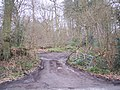 Access track into Redleaf Wood - geograph.org.uk - 1700123.jpg
