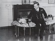 Admiral Somerville and cat.jpg