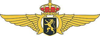 Aviator badge - Wing/Badge/Brevet of Belgian Air Force Pilot