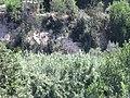 Albaida AB 45.jpg