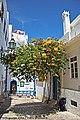 Albufeira - Portugal (5586492850).jpg