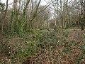 Alderney, Bourne Valley Park - geograph.org.uk - 1195861.jpg