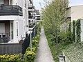 Allée Cerisiers - Noisy-le-Sec (FR93) - 2021-04-18 - 2.jpg
