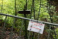 Allensbach - Ruine Kargegg 03 ies.jpg