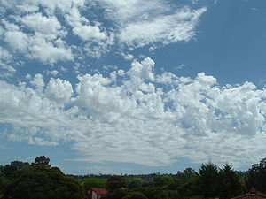 Altocumulus castellanus clouds