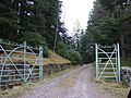 An entrance to Altcailleach Forest - geograph.org.uk - 376279.jpg