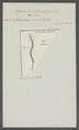 Anguillula lumbrici - - Print - Iconographia Zoologica - Special Collections University of Amsterdam - UBAINV0274 104 02 0015.tif