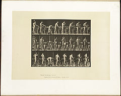 Animal locomotion. Plate 507 (Boston Public Library).jpg