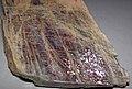Anorthoclase feldspar with iridescent hematite inclusions (Potanikha Quarry, Kasli, Ural Mountains, Russia) 2 (30105516385).jpg