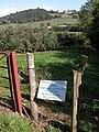 Apple orchards near Ruthlin, Skenfrith - geograph.org.uk - 248708.jpg