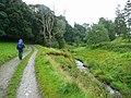 Approaching Stobo on the John Buchan Way - geograph.org.uk - 963912.jpg