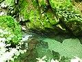 Apriltzi, Bulgaria - panoramio (62).jpg