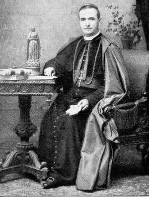 Aristide Rinaldini - Image: Aristide Rinaldini Kardinal